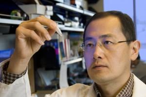 Professor Yamanaka Shinya Will Receive A Washing Machine for Nobel Prize