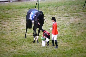 Italian Jockey Mirco Demuro bows to the Japanese emperor following a horse race, the video of which soon becomes viral amongst Japanese netizens.
