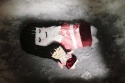 rsz_snowman-04