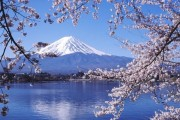 Mount Fuji is to be designated as an UNESCO world heritage site