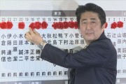 LDP dominate 2014 Lower House election